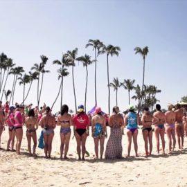 2013 Butterfly Effect Maui