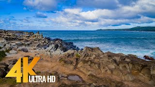 4K Maui Tropical Island – Calm Nature Sounds – Relaxing 3 Hour Video